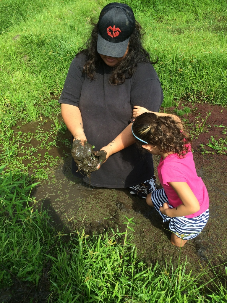 """We are preparing the lo'i for planting"", says Aunty Ana"