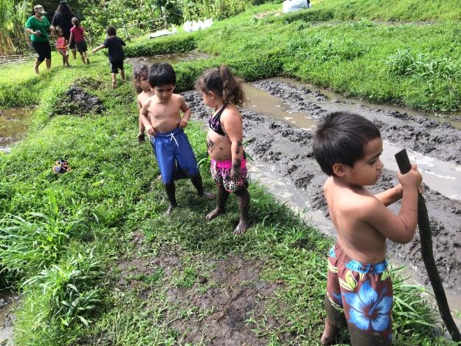 Deep in mud
